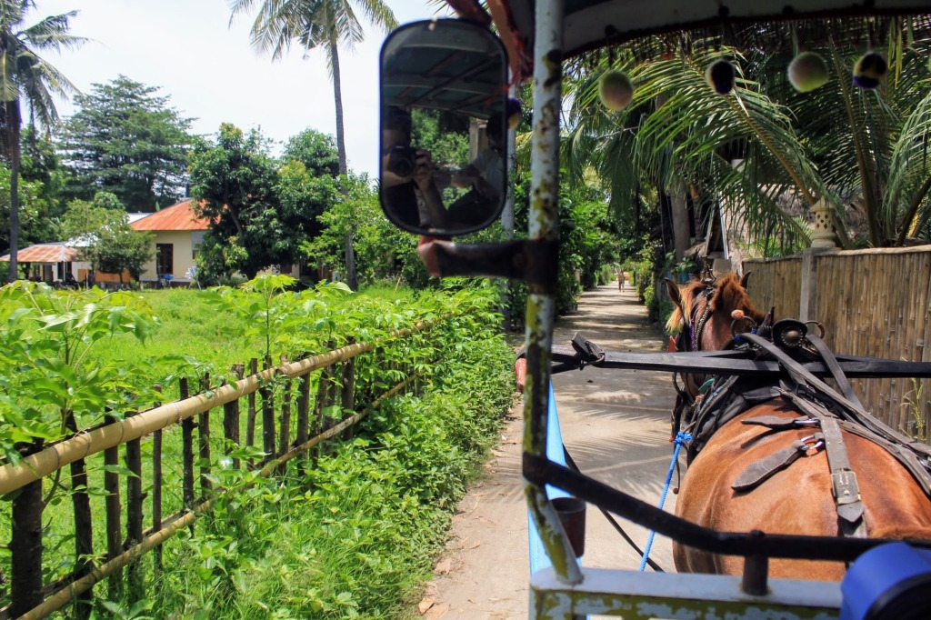 Carriage pulled by horse - Gili Air Island Indonesia