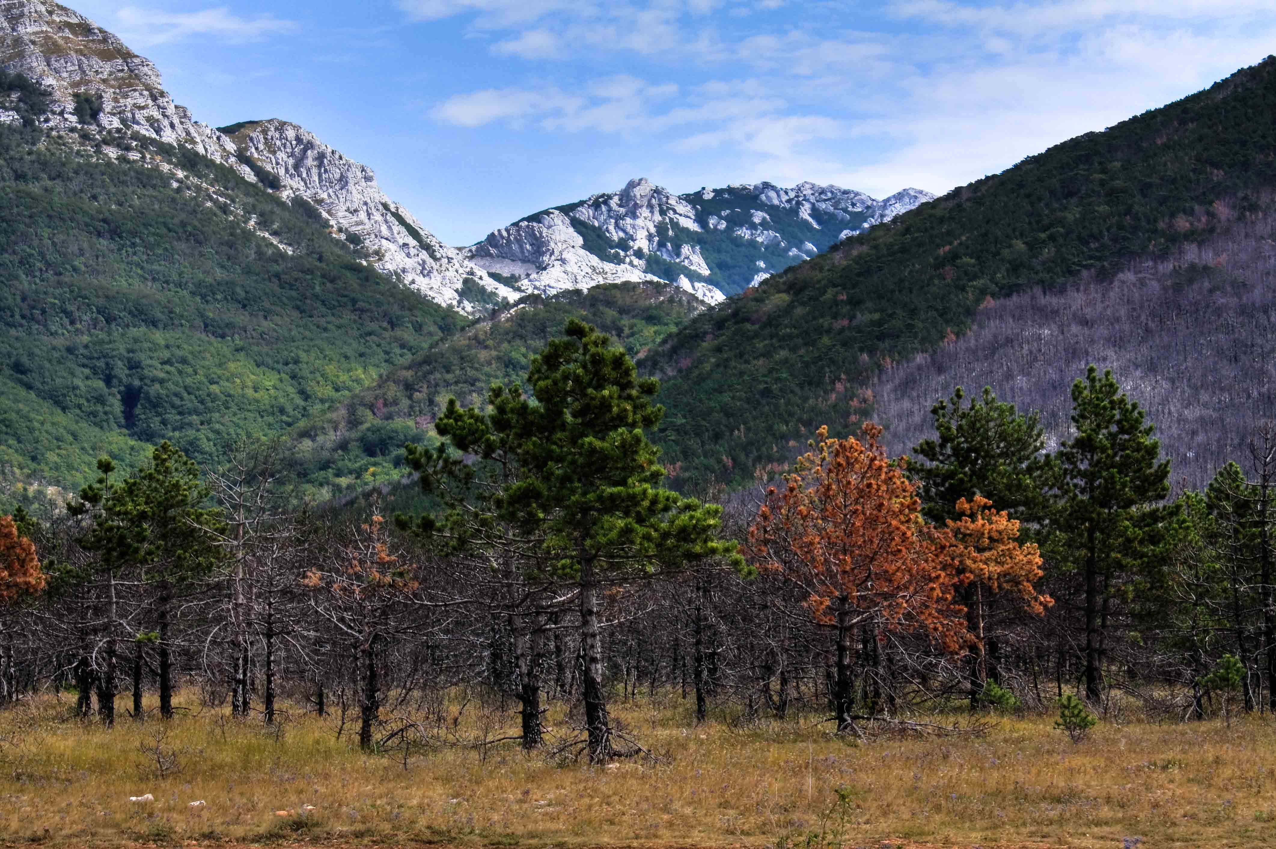 Paklenica Croatia natural wonder