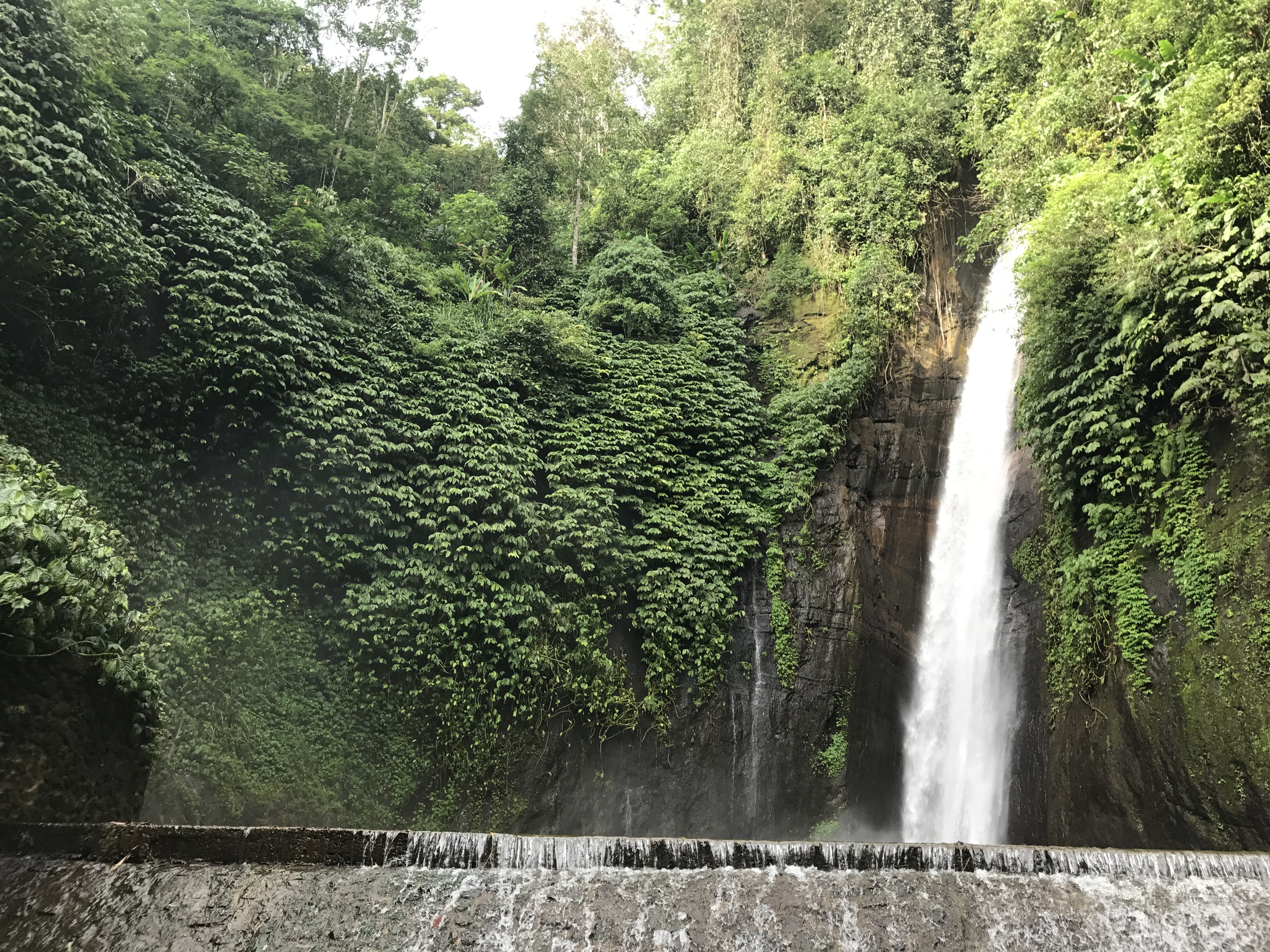 Munduk Waterfall in Buleleng Bali Indonesia